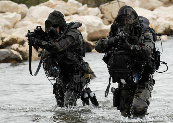 French Commandos Marine